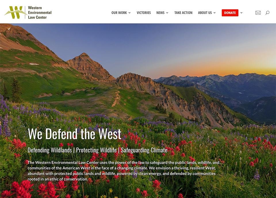 Wordpress and open-source website development